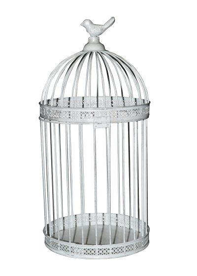 Hire Small Birdcage