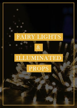 Fairy Lights & Illuminated Props