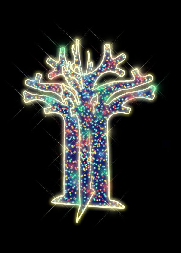 Multicolour Illuminated Boabab Tree