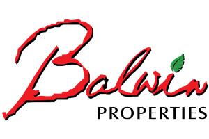 Balwin-Properties